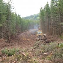Будівництво лісової дороги